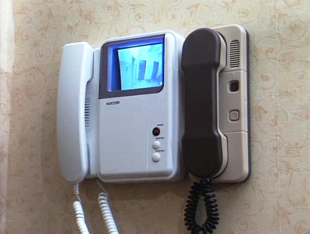 Многие пользователи начинают искать проблему в некачественном дисплее монитора, хотя поломка может быть связана с банальным загрязнением глазка видеокамеры