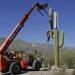 Маскировка оборудования мобильных операторов и радиофобия абонентов